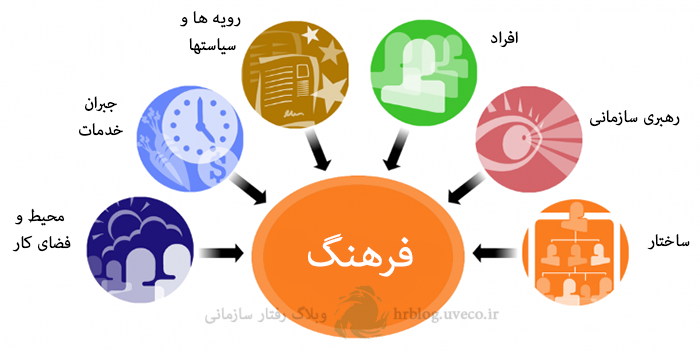 local-organizational-culture