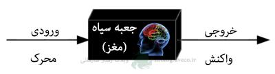 cognitive-black-box2